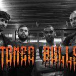 "Confira o clipe de ""Caipira Costa Quente"" da banda Stoned Bulls"